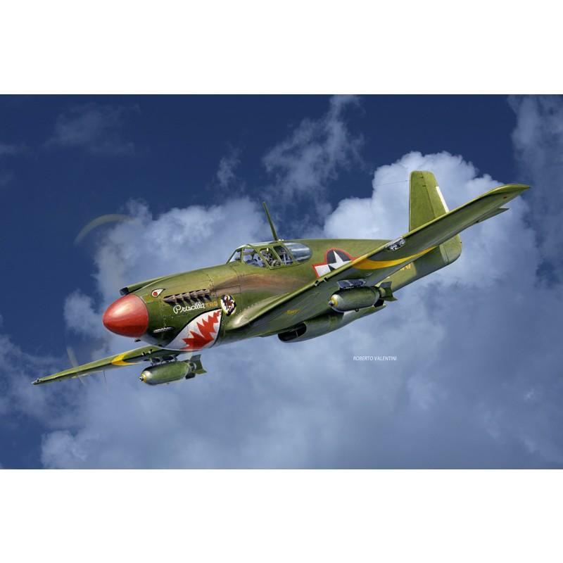 συναρμολογούμενο αεροπλάνο
