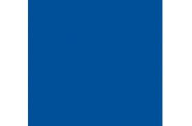 Gunze GSI Creos H-005 Blue