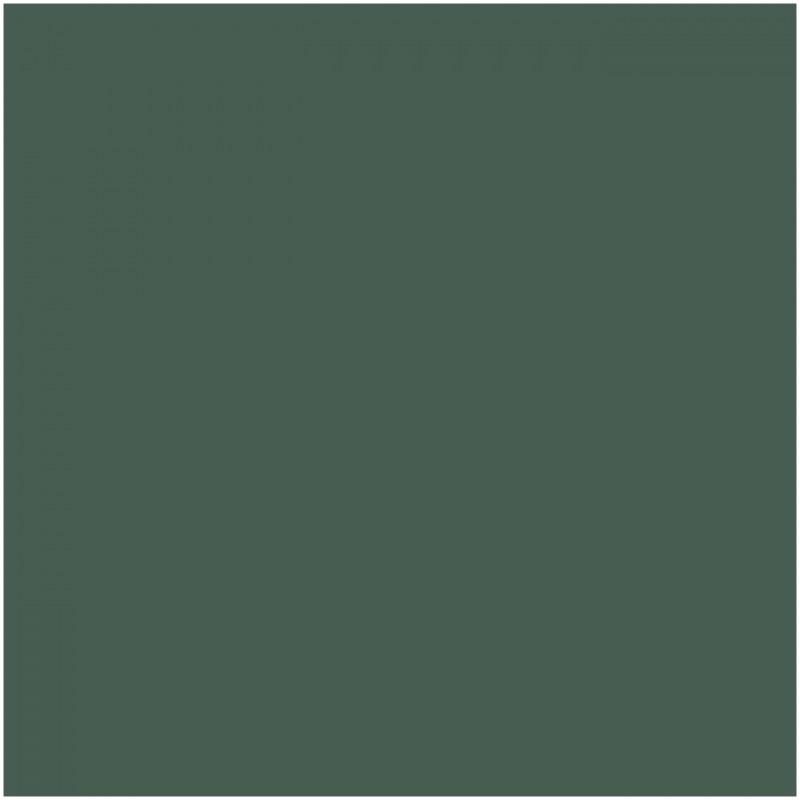 H-303 Semi-Gloss Green FS34102