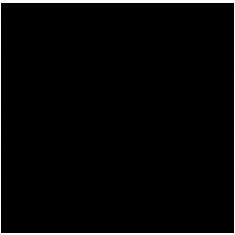 Gunze GSI Creos H-077 Flat Tyre Black (10ml)
