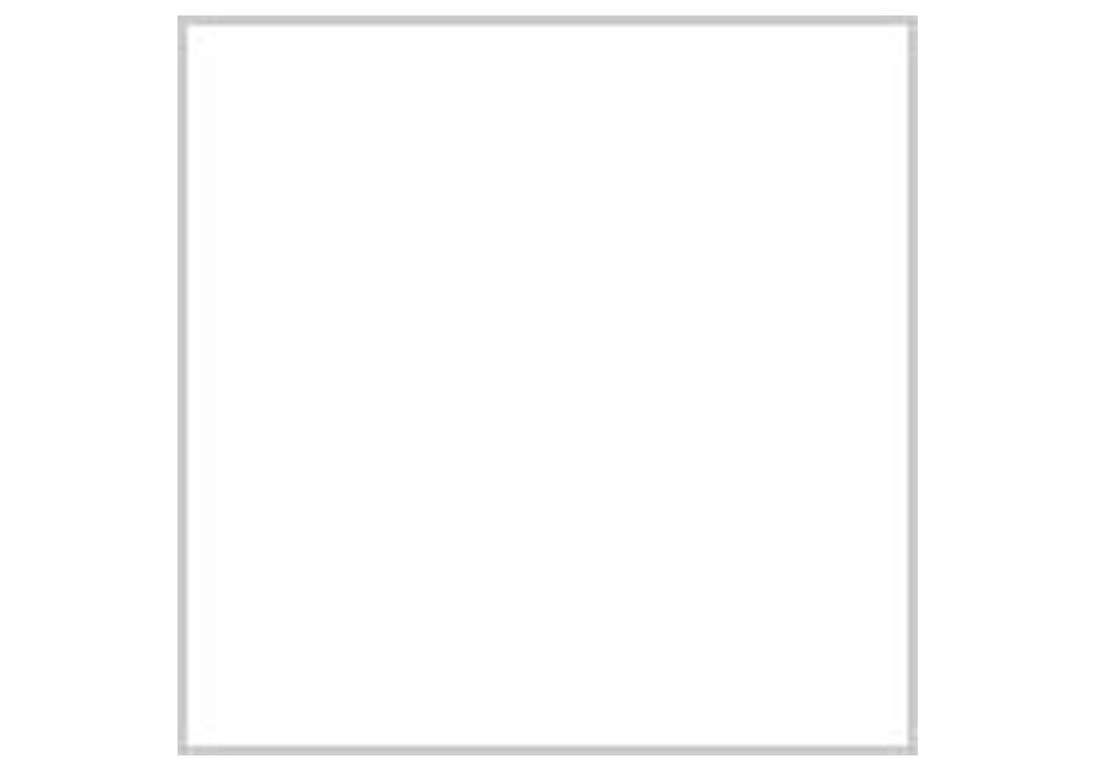 Gunze GSI Creos H-020 Flat Clear (10ml)
